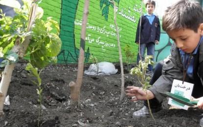 تاملی بر امضای تفاهم نامه ی آموزش های زیست محیطی در مدارس
