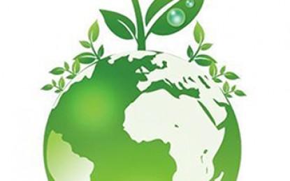معرفی کتاب: حقوق بشر و محیط زیست سالم