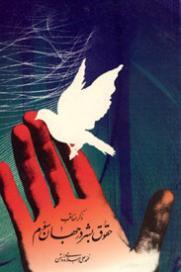 معرفی کتاب: ذکر مناقب حقوق بشر در جهان سوم