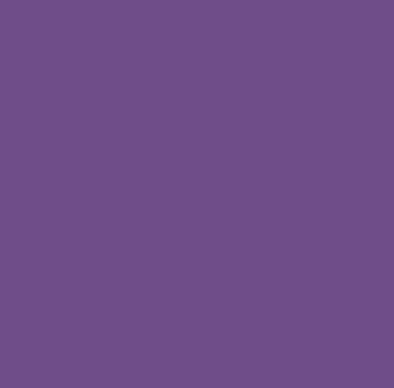جنبش زنان در امریکا و سازمان ملی زنان / آیدا ابروفراخ