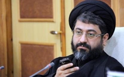 سیدمهدی موسوینژاد: با ایجاد باور دیگری در اذهان نمایندگان، طرح رد شد/ سیمین روزگرد