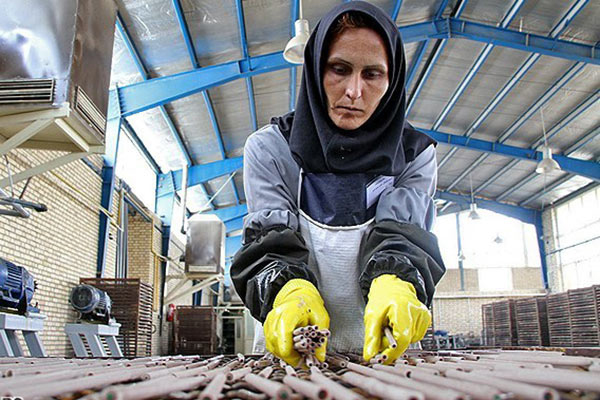 توسعهی پایدار، برابری جنسیتی و توانمندسازی زنان/ الهه امانی