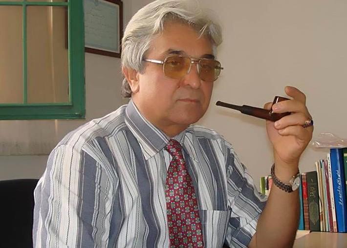 محمد سیف زاده: مجرمان مواد مخدر را نباید زندانی کرد/ مرتضی هامونیان