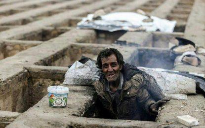گورخوابها فراموش شدهاند/ محمد محبی