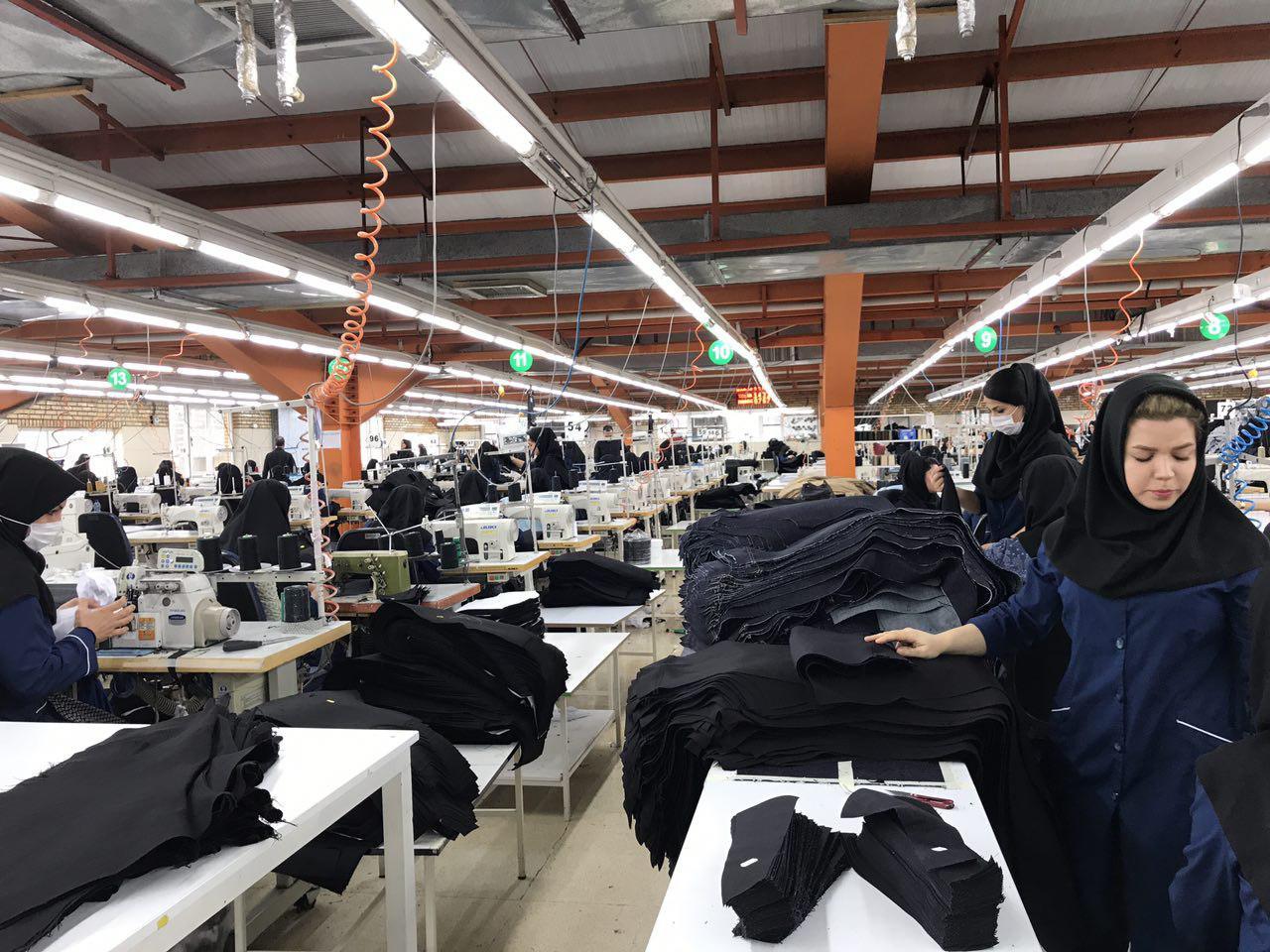 ملاحظاتی درباره چالش های زنان و اقتصاد در ایران/ الهه امانی