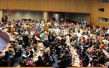 چالش ها و تنگناهای حفظ حقوق زنان در اجلاس سازمان ملل/ الهه امانی