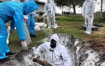 کارگزاران کشتار مشغول کارند؛ این بار با کرونا!/ماری محمدی