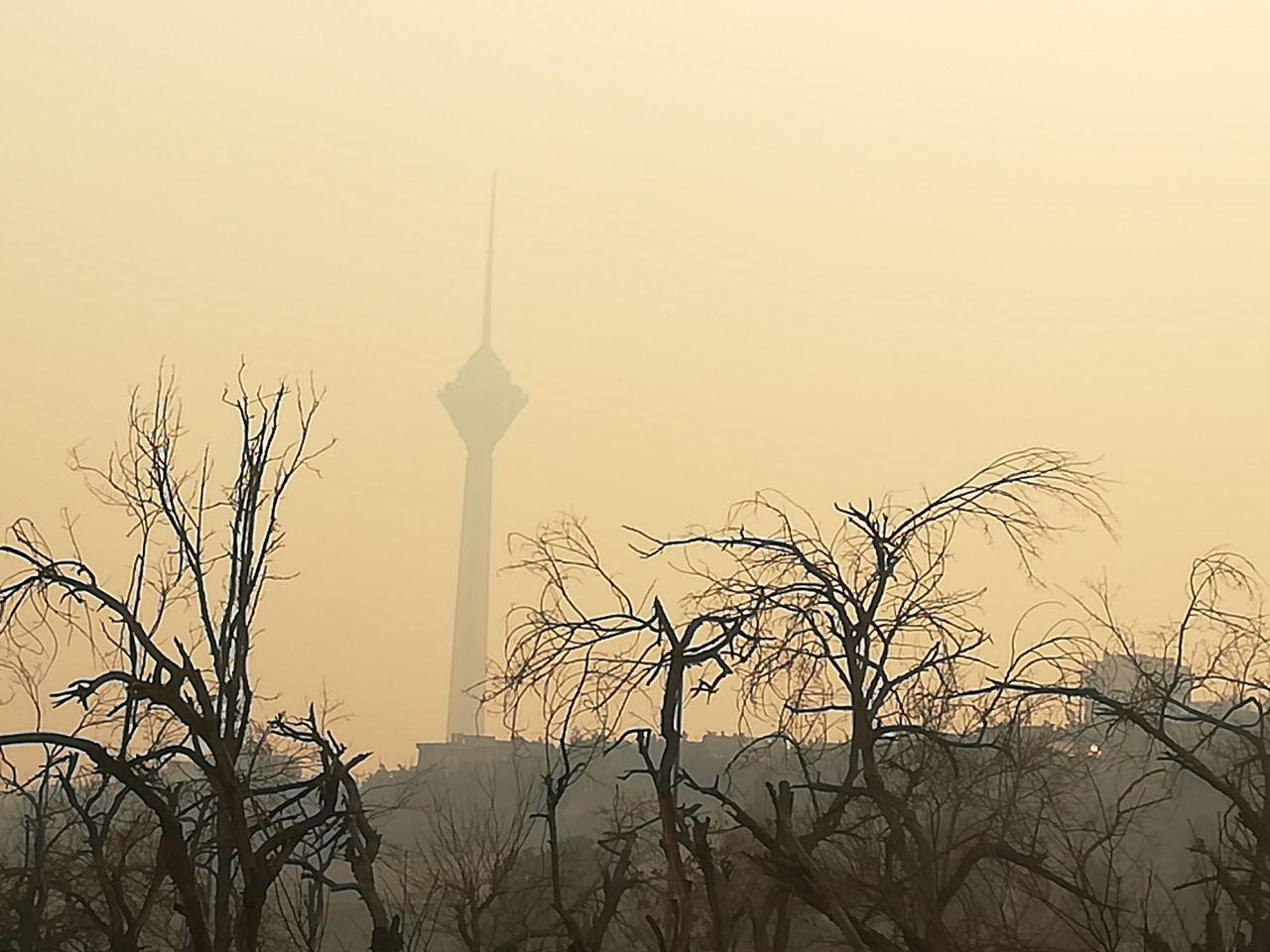 آلودگی هوای شهرها تحفهی توسعهی ناپایدار و سوءمدیریت/پانیذ قهرمانی