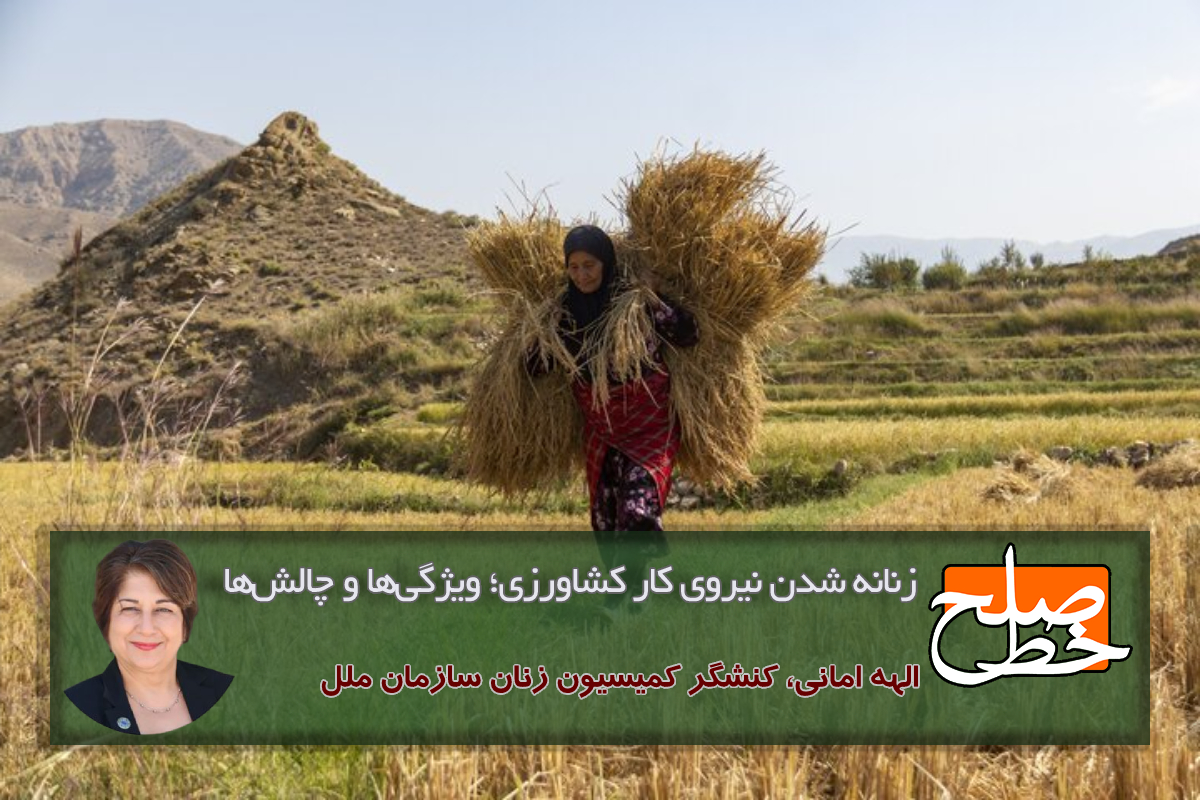 زنانه شدن نیروی کار کشاورزی؛ ویژگیها و چالشها/الهه امانی